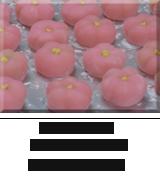 kisetaunowagasiume160
