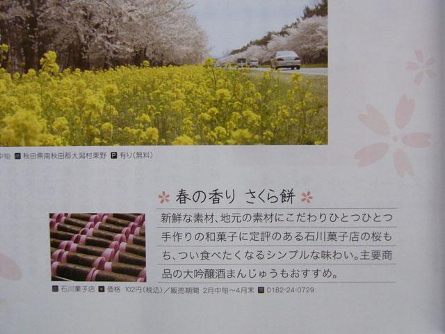 machisuki640sakura